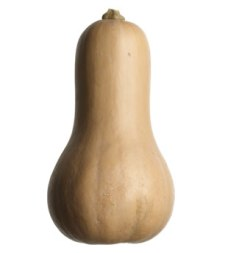 All hail the butternut squash!